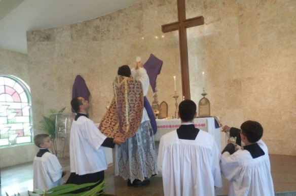 Domingo de Ramos (Pe. Daniel)15