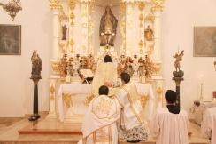 Missa 293